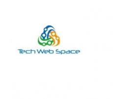 TechWebSpace