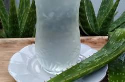 प्रेगनेंसी में एलोवेरा जूस का उपयोग व नुकसान | Aloe Vera Juice During Pregnancy In Hindi