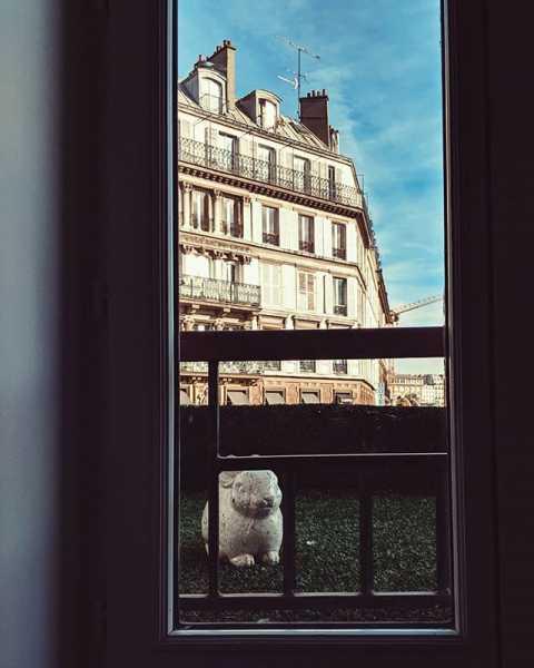 #rabbit #art #paris