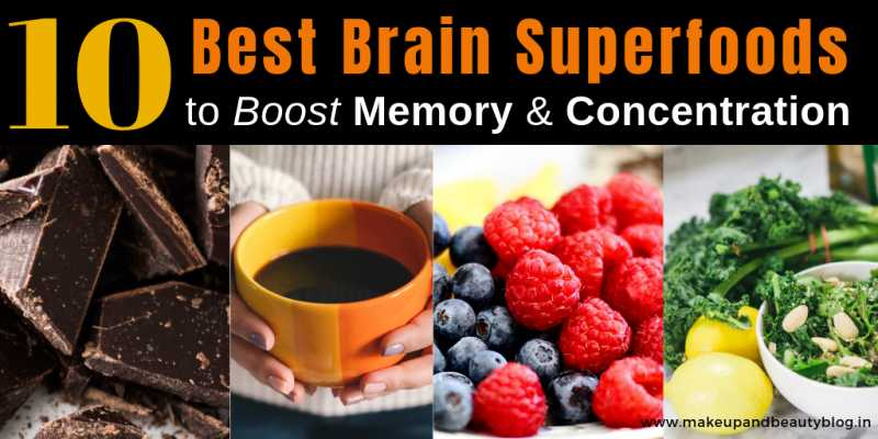 10 Best Brain Superfoods To Boost Memory & Concentration - Makeup Review And Beauty Blog