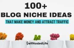 100+ Blog Niche Ideas To Start Blogging For Money