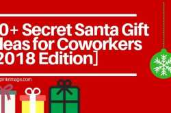 20+ Secret Santa Gift Ideas for Coworkers [2018 Edition] - Pinkrimage