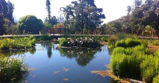 5 Biggest Douchebags Of The Royal Botanic Gardens