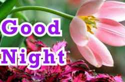 52+ beautiful good night images free download for whatsapp