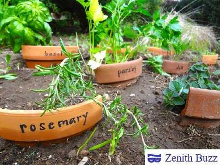 9 Best Up-cycling Idea Which You Must Try - ZenithBuzz