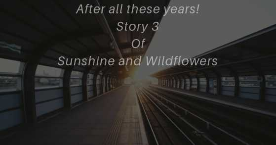 After All These Years : Story 3 Of Sunshine And Wildflowers
