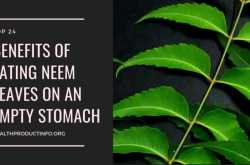 benefits of eating neem leaves on an empty stomach