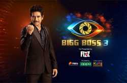 bigg boss 3 final contestants list