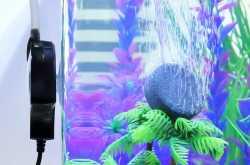 Best Aquarium Air pumps Review 2019 - Top 9 Ranking - Trustorereview