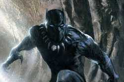 Black Panther Story in Hindi details summary