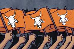 cow and its religious importance •