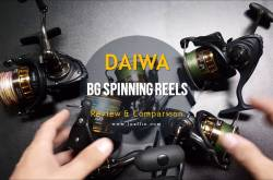 daiwa bg series review & comparison: which one suits your needs?