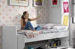 denver 2-in-1 desk & day bed