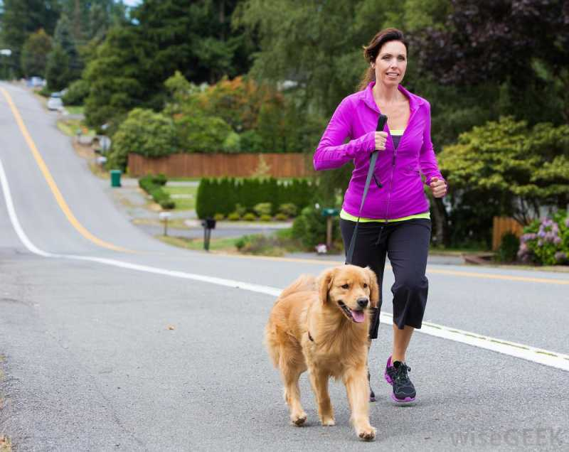 Exercising With Pets - Women Fitness