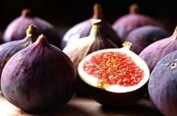 Fabulous Health benefits of consuming Figs
