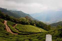 Home On The Range Munnar - HolidayMonk | Domestic Tour | International Tour | Resorts | Homestays