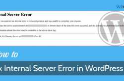 How to Quickly Fix 500 Internal Server Error in WordPress - WPMyWeb