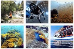 in the spotlight - medhavi davda, an adventure traveler & a passionate scuba diver