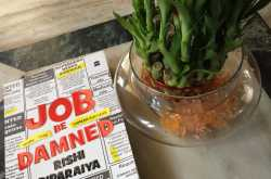 job be damned book review