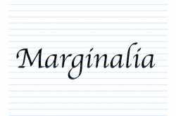 marginalia: jaipur literary festival 2019