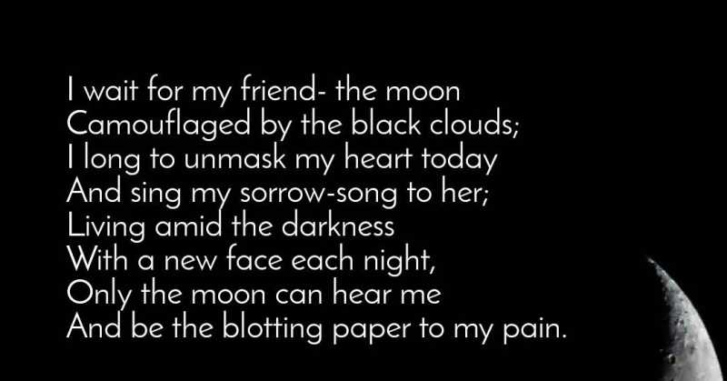 My Friend -the Moon (Sunshine And Wildflowers)