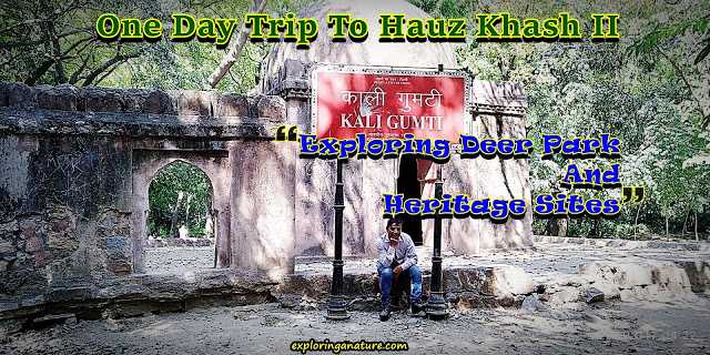 One Day Trip To Hauz Khash II - Exploring Deer Park And Heritage Sites