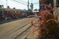 Pattaya - More than walking street, Street Food