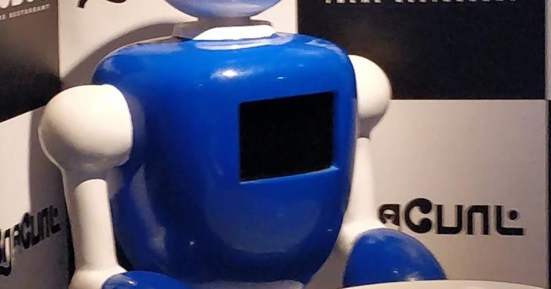 ROBOT THEME RESTAURANT @ SEMMENCHERI - A REVIEW