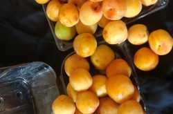 Recipe - Apricot  Khubani ka Sharbat