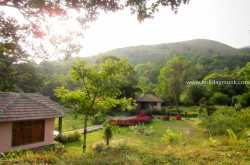 Review of Tropical Rain Forest Resort - Homestay in Sakleshpur | Resorts in Sakleshpur | Coffee Estate