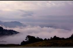 Roopkund Chronicles - Day 3 - Ali Bugyal to Pathar Nachauni