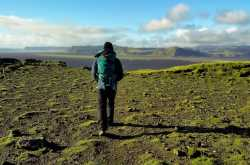 short and easy hikes in us national parks