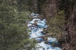 tamolitch falls (blue pool) hike, oregon