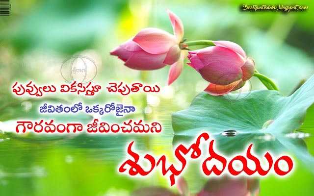Srinivasa Rao Garine Blogs Telugu Good Morning Images Wishes Quotes