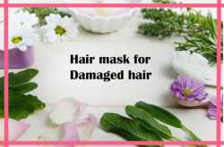 The Top Best 7 Hair Mask for damaged hair which are under $20