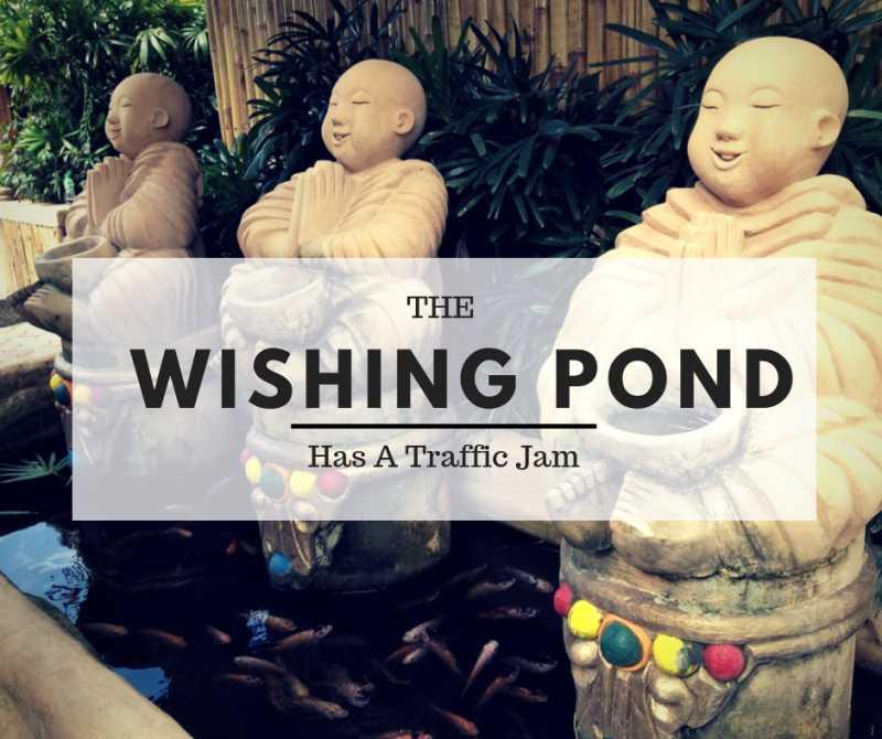 The Wishing Pond Has A Traffic Jam | Little Duniya