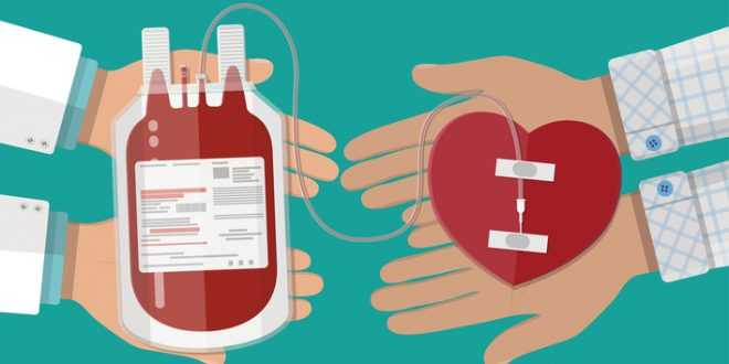 Things You Should Know Before Donating Blood | NewsPatrolling.com
