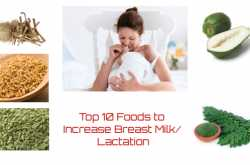 Top 10 foods to increase breastmilk supply/ Lactation foods