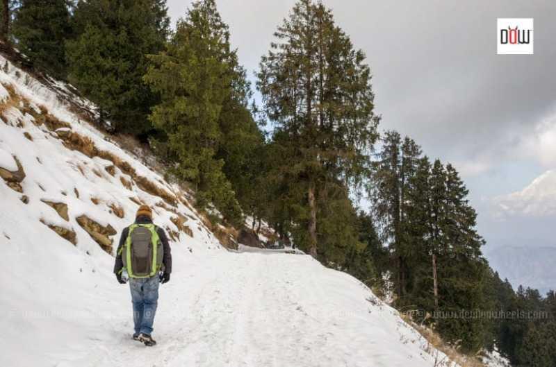 Top 5 Easy Treks In Uttarakhand For Beginners To Enjoy And Explore