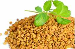 top 5 health benefits of consuming fenugreek seeds