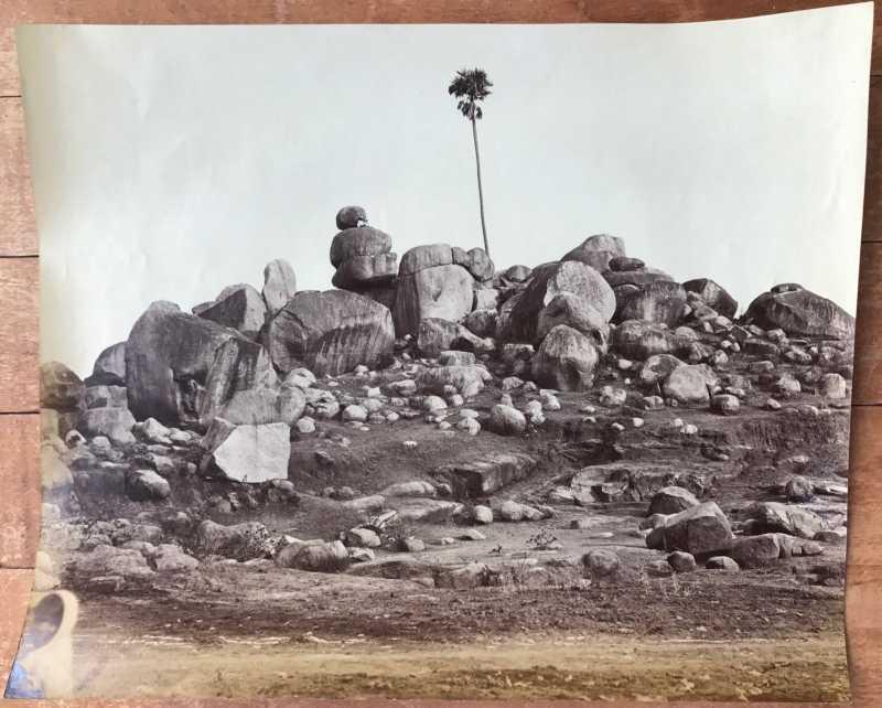 Tree In Rocky Landscape - C. 1860