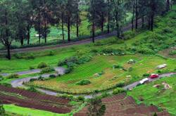 trip to ooty from bangalore » triplyzer