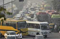 understanding road safety rules is important for drivers as well as pedestrians