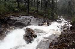 waterfalls are the best pit stops on way to north sikkim