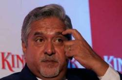 Who should pay for Vijay Mallya's mistakes?