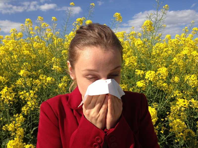 Why Did I Get An Allergy Now? - Tips Clear Beauty Business Health Tech Travel And General