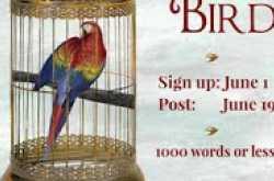 write...edit...publish...+ iwsg : caged bird june 2019