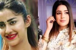 Bigg Boss 13: Punjabi Actress Divya Sharma Supports Himanshi Khurana; Calls Shehnaaz Gill 'fake'