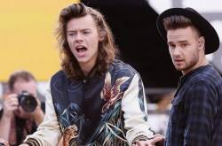 Liam Payne On One Direction Member Harry Styles: There's So Much Mystery Around Who He's Become